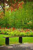 Bench unter einem Baum mit Blumen in einem Park Stockbild