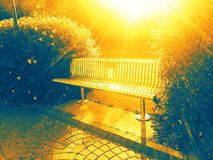 Bench. View for sunny bench in Derry Stock Images