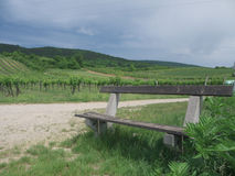 Bench in a Vinyard Royalty Free Stock Images