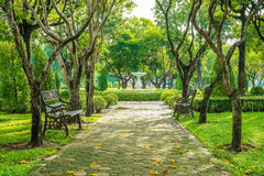 Bench and walkway in the garden Royalty Free Stock Image