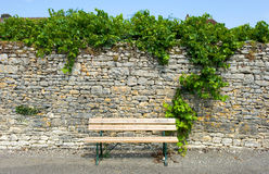 Bench before wall Stock Image