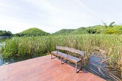 Bench on the water. Royalty Free Stock Images
