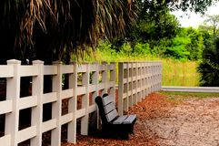 Bench and white fence Stock Image