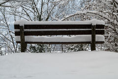 Bench in winter. A bench covered in snow during winter Royalty Free Stock Images