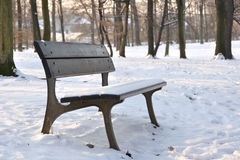 Bench in the winter park Royalty Free Stock Photo