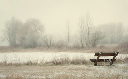 Bench in the winter park Stock Photography
