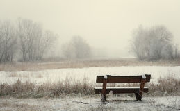 Bench in the winter park Royalty Free Stock Photos