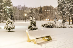 Bench in the  winter park  by night Royalty Free Stock Photography
