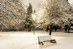 Bench in the  winter park  by night Stock Photography