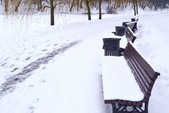 Bench in winter park. Bench in russian winter park Royalty Free Stock Photo