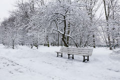 Bench in winter Park Royalty Free Stock Images