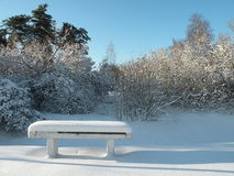 Bench in Winter time Stock Images