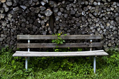 Bench and Wood Royalty Free Stock Image