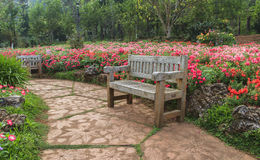 Bench wood in the flower garden. Bench wood in the garden, the royal agricultural Angkhangstation in chiangmai province, North of Thailand Stock Images