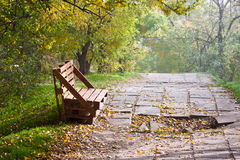 The bench of the wooden pallet stands on the alley of the park Royalty Free Stock Images