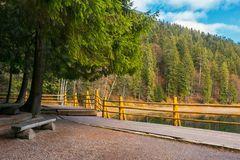 Bench on the wooden pier of Synevyr lake in autumn. Wonderful nature scenery in good weather royalty free stock image