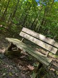 Bench in the Woods stock photos