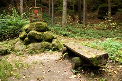 Bench in the woods Royalty Free Stock Images