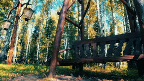 Bench in the woods Russia. Bench in the woods where you can relax Russia stock footage