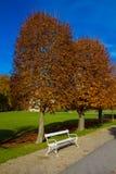 Benche in Autumn Park - Moritzburg, Germania fotografie stock libere da diritti