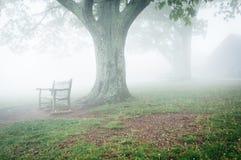 Benche och träd i dimma, bak Dickey Ridge Visitor Center i Sh royaltyfri fotografi