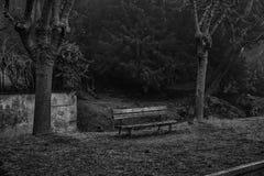 Benche solo nell'alzaia nebbiosa, nessuna gente, umore solo fotografie stock