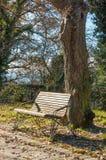Benche sotto il sole in autunno fotografie stock libere da diritti