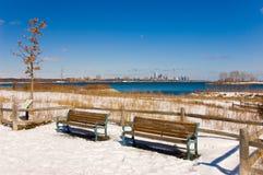 benches Канада пустой toronto Стоковые Фото