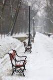 benches красный снежок Стоковые Изображения RF