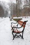 benches красный снежок Стоковое Изображение