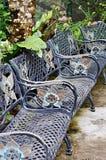 benches субтропическая вегетация Стоковая Фотография