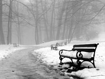 Benches. In forest under snow Royalty Free Stock Photography