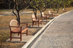 Benches along the sidewalks. Stock Image