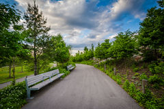 Benches along a walkway at Corktown Common, in Toronto, Ontario. Stock Images