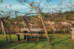 Free Benches And Stone Table Amid A Vineyard Stock Image - 167929281