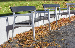 Benches in Autumn Leafes Royalty Free Stock Photography