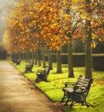 Benches in autumn park Stock Photos