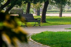 Benches. And trees in the park Royalty Free Stock Image
