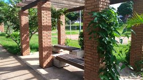 Benches in a brazilian park. Located in Presidente Prudente - southeast royalty free stock photo