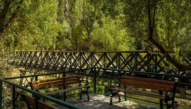 Benches and bridge royalty free stock image