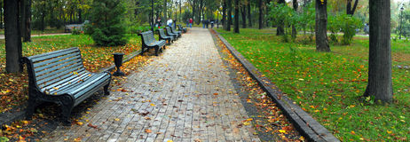 Benches in city park. In the autumn Stock Photo