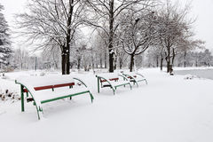 Benches in a city park covered with snow stock images