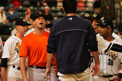 Benches cleared. Players and coaches from both teams meet in the middle of the diamond stock photography