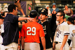 Benches cleared. Royalty Free Stock Photography