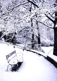 Benches Covered In Powdery Soft Snow Royalty Free Stock Photography
