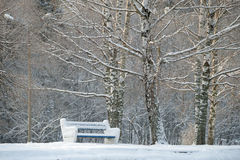 Benches covered with snow Royalty Free Stock Photos