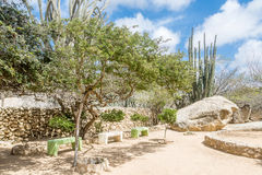 Benches in Desert Rock Garden Royalty Free Stock Images