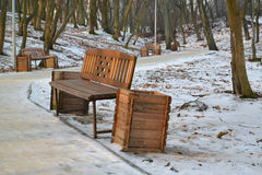 Benches in the desert winter park Royalty Free Stock Photo