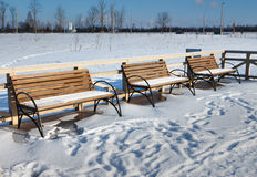 Benches on the embankment. Benches on the lake embankment. January, 2014 near the city of Vitebsk. Belarus Europe Stock Image
