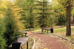 Benches and footpaths in the autumn city park. Victory Park, Saratov, Russia. Royalty Free Stock Image